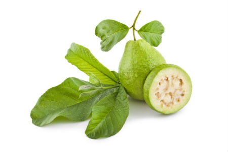 guava-leaves-tooth-pain-treatment