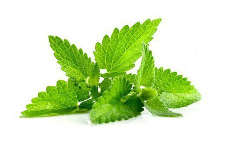 peppermint-home-made-tooth-pain-relief
